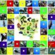 Карта. Интерактивная игра «Птицы»
