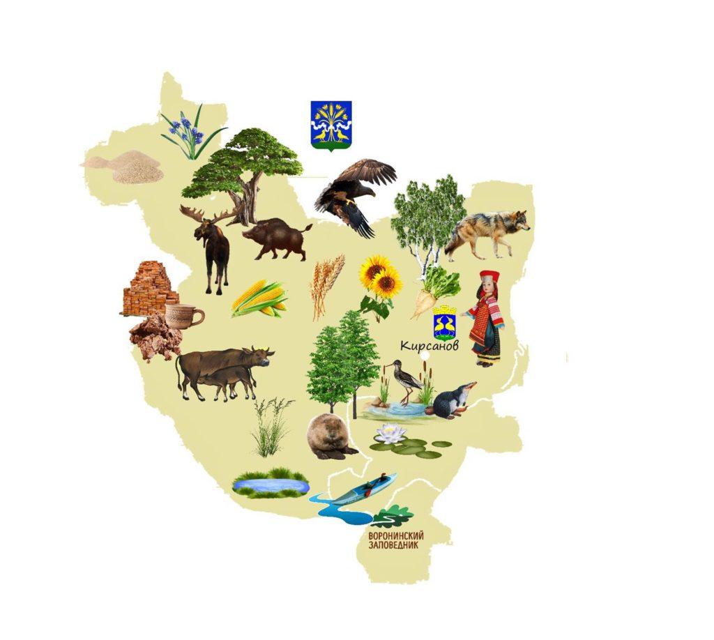 Проект «Интерактивная экологическая тропа «Птицы Кирсанова»